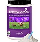 Enzimes for dogs top dog vitamins