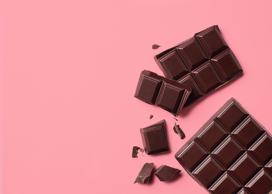 Chocolate is Toxic for Pets