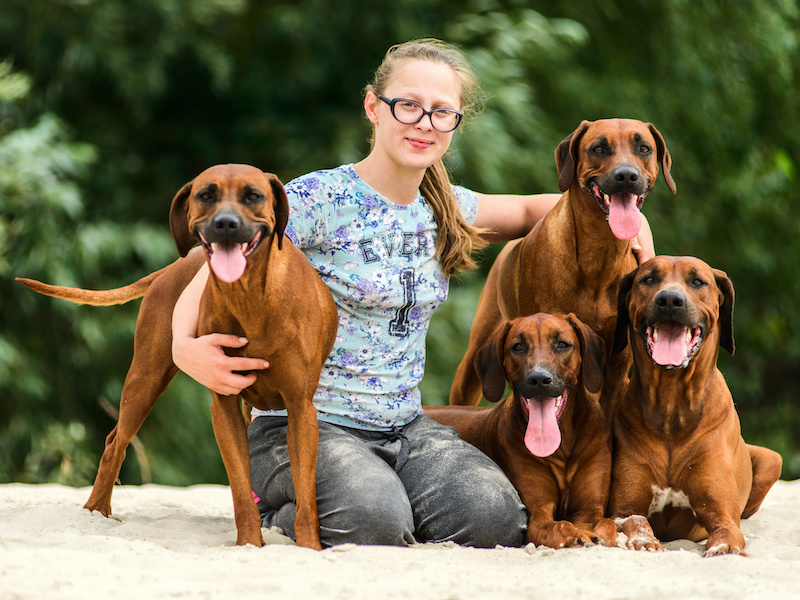The Benefits of Adopting a Dog from a Breeder